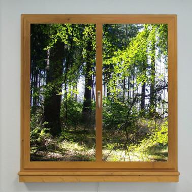 Window LED Motiv 06