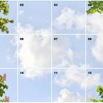Himmel mit Laub 41101