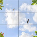 Himmel mit Laub 41101, 12er Set