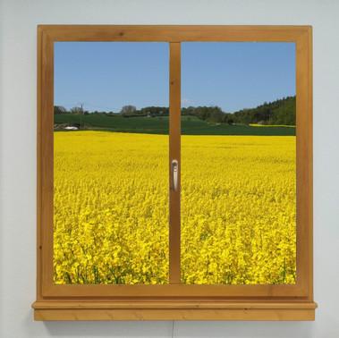 Window LED Motiv 02