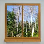 Window LED Motiv 05