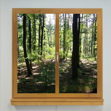 Window LED Motiv 01