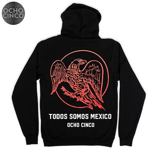 TODOS SOMOS MEXICO