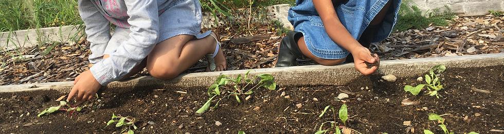 kids planting at garden camp