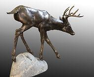 fabricated bronze whitetailed deer