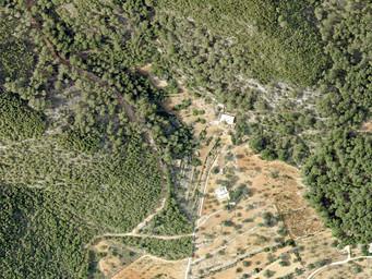 Preliminary landscape design around an old Finca in Ibiza