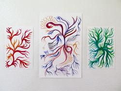 """branch/flow"" series"