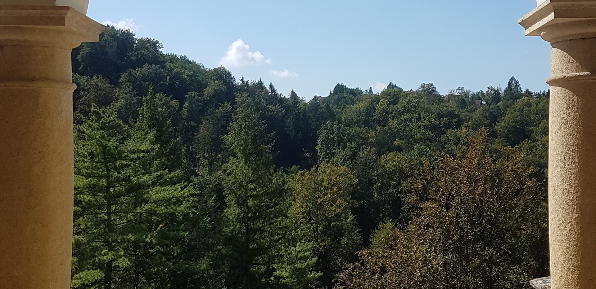 Castle view  .jpg