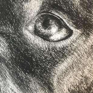 Black Dog (Detail)