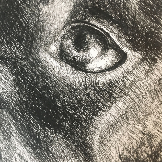 Black Dog (Detail)