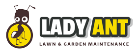 lady-ant-logo.png