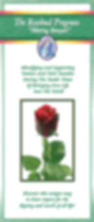 Rosebud Program Brochure