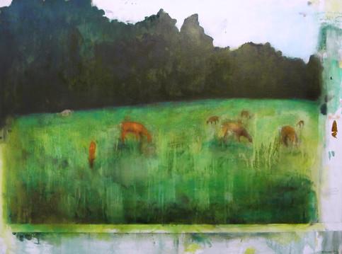 Deer in Richmond Park III