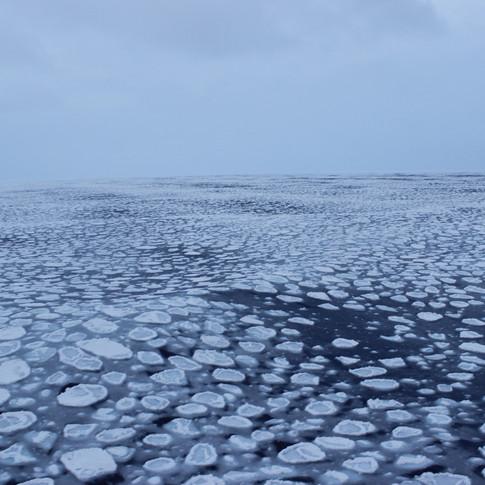 Swells in the sea ice