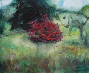 Azalea Bush by the Old Zoo