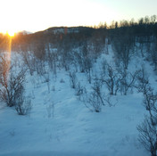 First sunlight of the year in the Arctic Circle