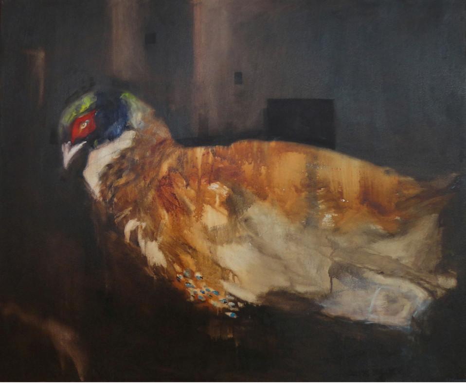 Christian's Pheasant, Eyragues/ Le faisan de Christian, Eyragues