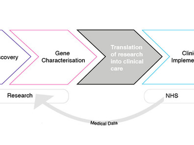 Genomic medicine: filling the gap or working the boundary between clinical practice and research