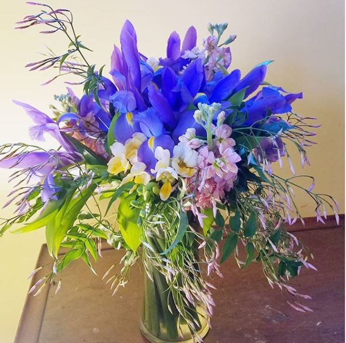 iris and jasmine insta