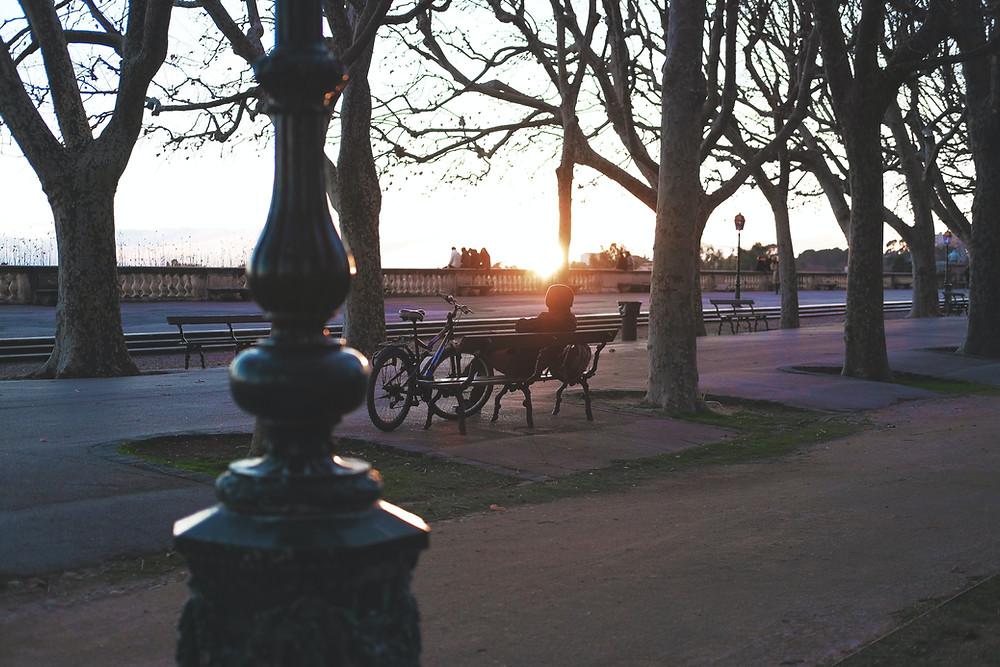 Le parc du Peyrou au coucher du soleil