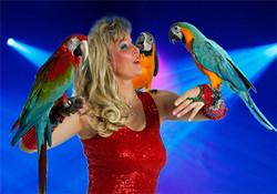 Die Samels Papageienshow