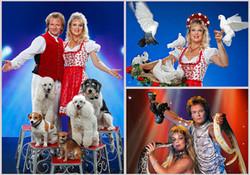 Die Samels Unterhaltungs_Show_Programme.