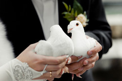 Wedding photography, New York, NY