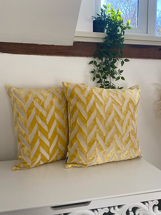 The sunshine cushion x 2