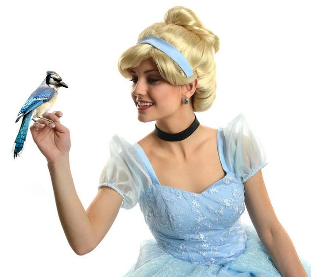 Disney Themed Parties