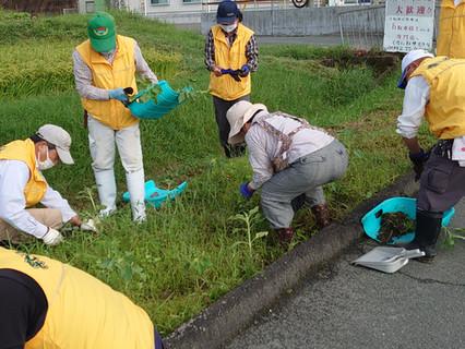 2020.9.13 9-Ⅰ例会   除草と植え替え