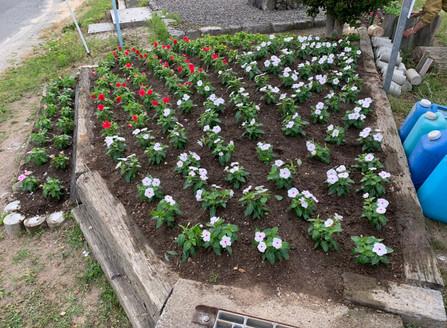 2020.5.23 5-3月例会 花壇植え替え>>¥