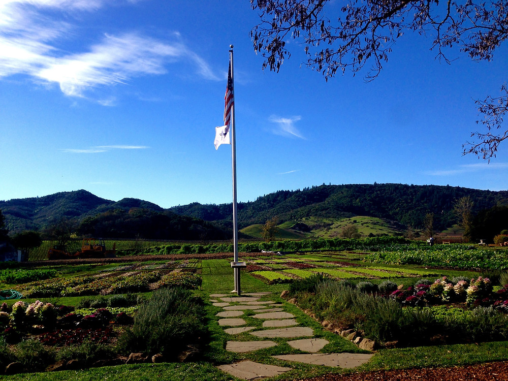 Photo: French Laundry Garden