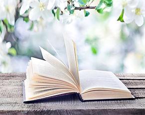 bigstock-Open-Book-167466344.jpg