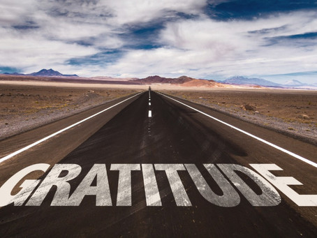 Exploring a world of gratitude amidst a pandemic