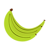 banana-bunch_green.png