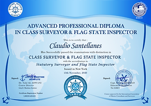 Surveyor Diploma.png