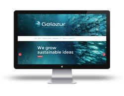 work-Gelazur web-2-02