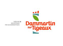work-Dammartin sur Tigeaux-08