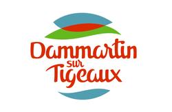 work-Dammartin sur Tigeaux-02