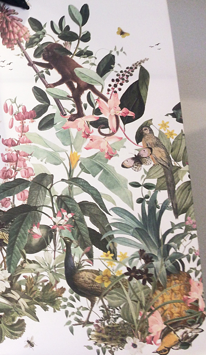 Fotovorlage für Wandmalerei