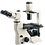 Thumbnail: Labomed TCM400 Phase Contrast Microscope