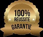 100pourcent-reussite.png