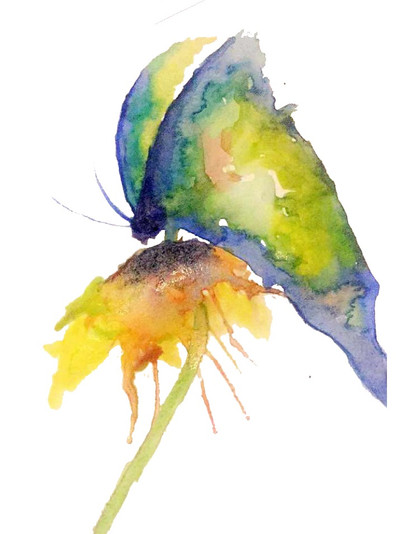 Butterfly watercolour painting