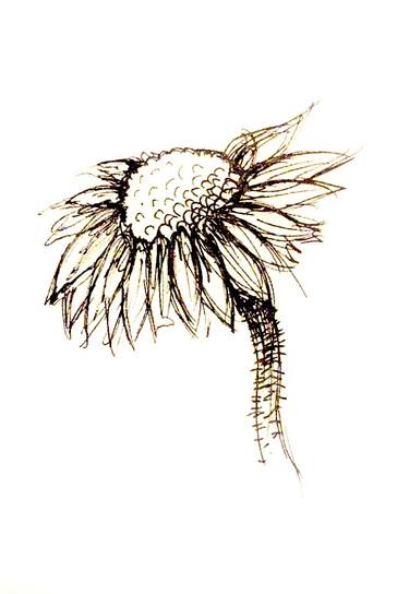 Flower pen drawing