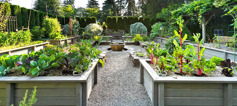 Shoreline Potager Garden