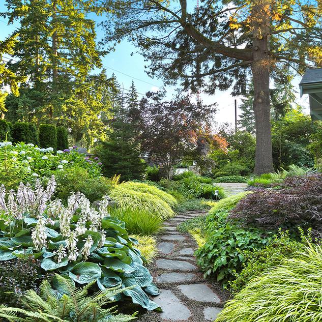 Shoreline Entry Garden