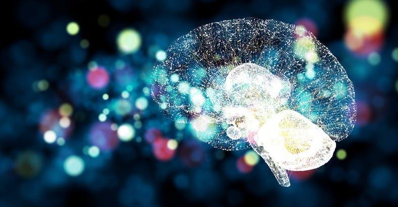 Neurociencia: ¿Dominancia cerebral?