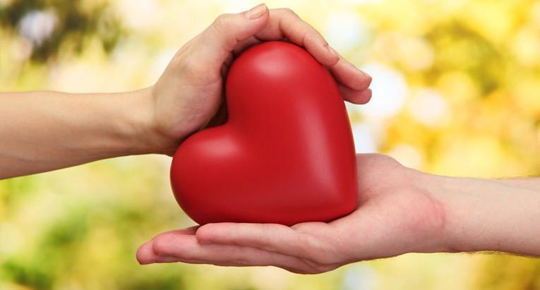 El perdón: ¿Cómo sanar cicatrices profundas?