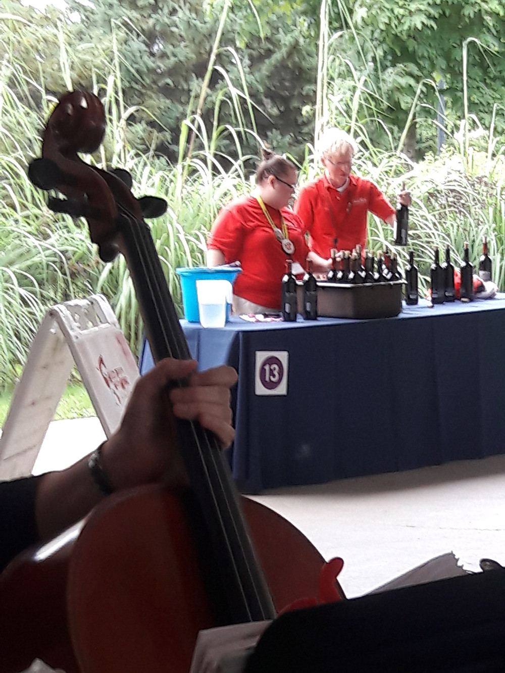 Rondo String Quartet at the Wild Beasts, Wild Wine event at the Detroit Zoo. www.RondoStringQuartet.com