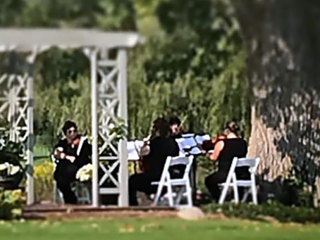 String Quartets and the Weather